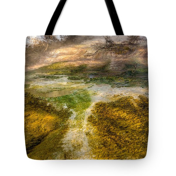 Hot Springs Pool Tote Bag by Sue Smith