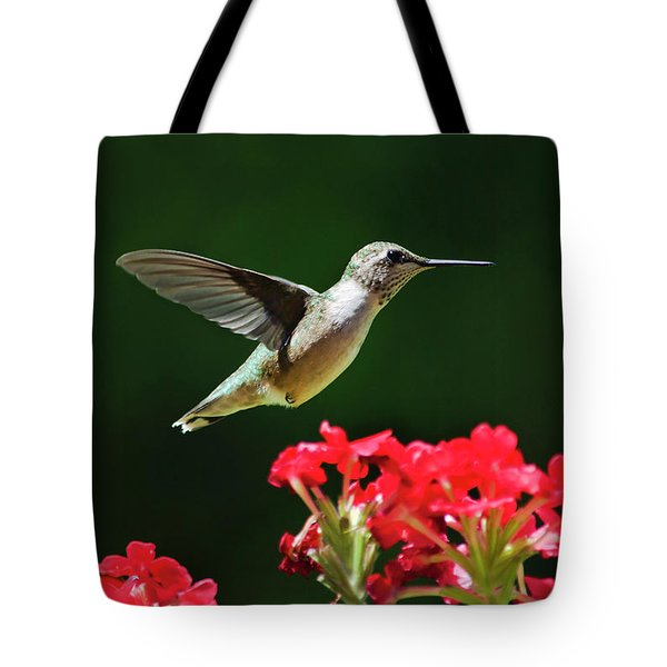 Hovering Hummingbird Tote Bag by Christina Rollo
