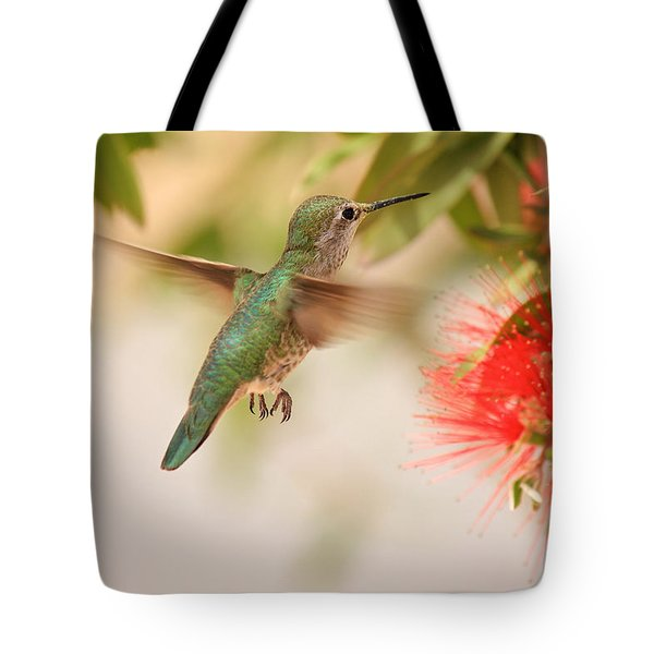 Hummingbird In Paradise Tote Bag by Penny Meyers