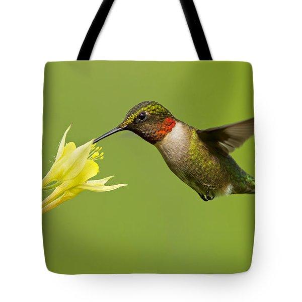 Hummingbird Tote Bag by Mircea Costina Photography