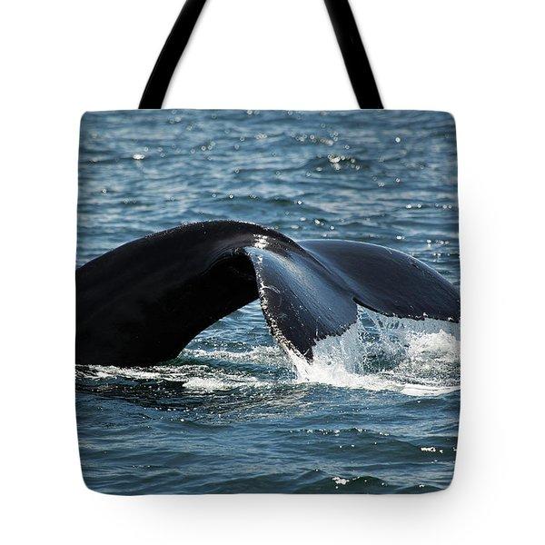 Humpback Whale Tail Cape Cod Massachusetts Tote Bag by Michelle Wiarda