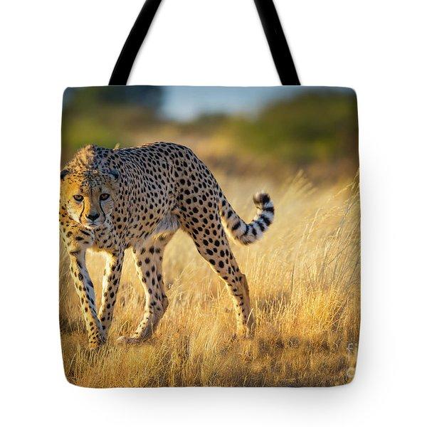Hunting Cheetah Tote Bag by Inge Johnsson