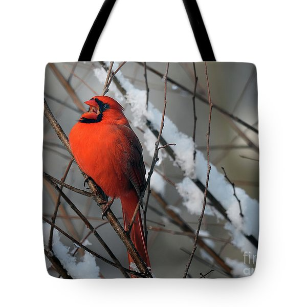 I Am So Ready For Spring Tote Bag by Lois Bryan