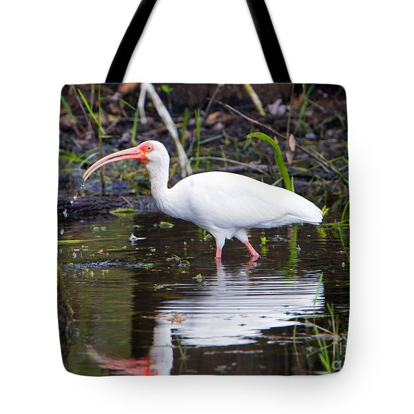 Ibis Drink Tote Bag by Mike Dawson