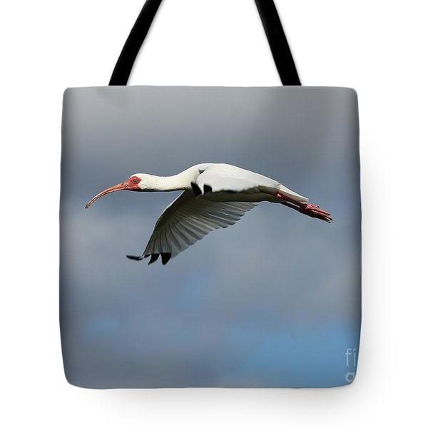 Ibis In Flight Tote Bag by Carol Groenen