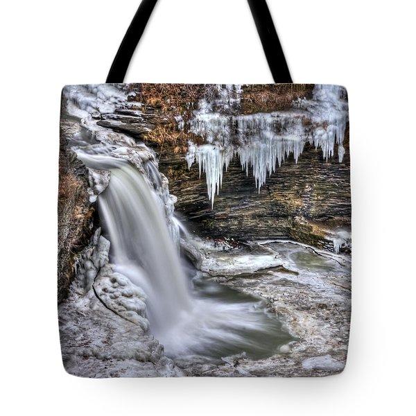 Ice Breaker Tote Bag by Evelina Kremsdorf