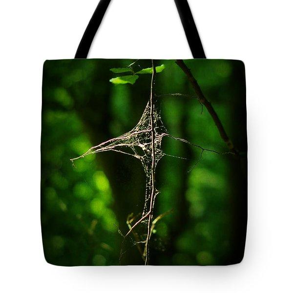 Illumination Tote Bag by Rebecca Sherman