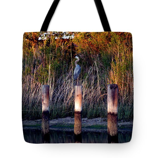 Illusion Tote Bag by Clayton Bruster
