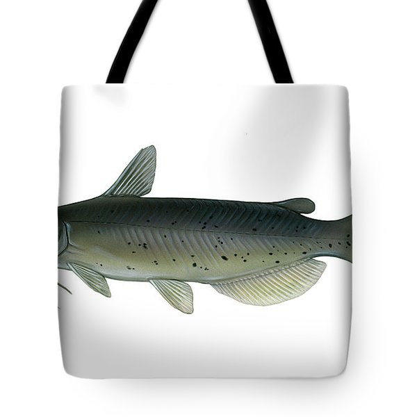 Illustration Of A Channel Catfish Tote Bag by Carlyn Iverson
