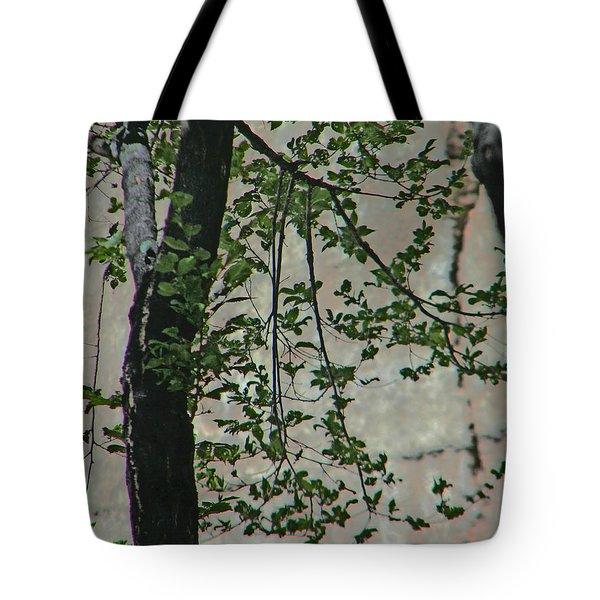 Impression Of Wall And Trees Tote Bag by Lenore Senior
