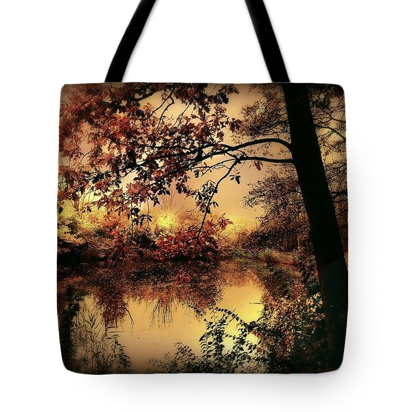 In Dreams Tote Bag by Photodream Art