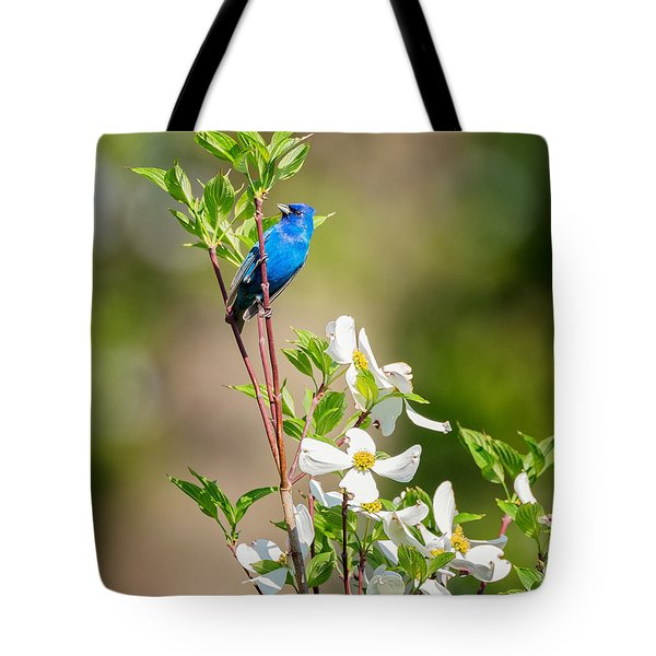 Indigo Bunting In Flowering Dogwood Tote Bag by Bill Wakeley