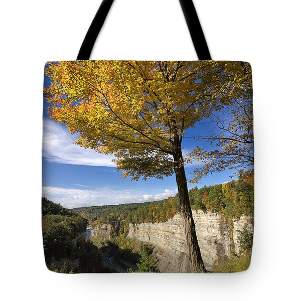 Inspiration Point Tote Bag by Louise Heusinkveld