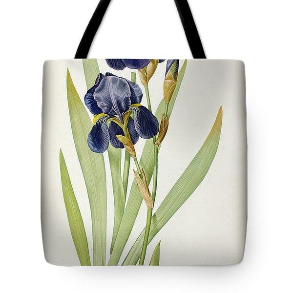 Iris Germanica Tote Bag by Pierre Joseph Redoute