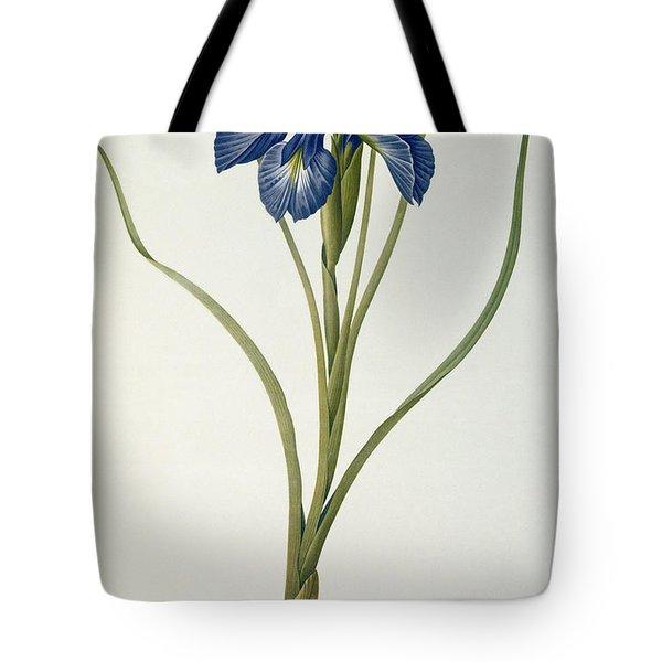 Iris Xyphioides Tote Bag by Pierre Joseph Redoute