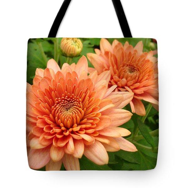 It Is Spring Tote Bag by Kathy Bucari