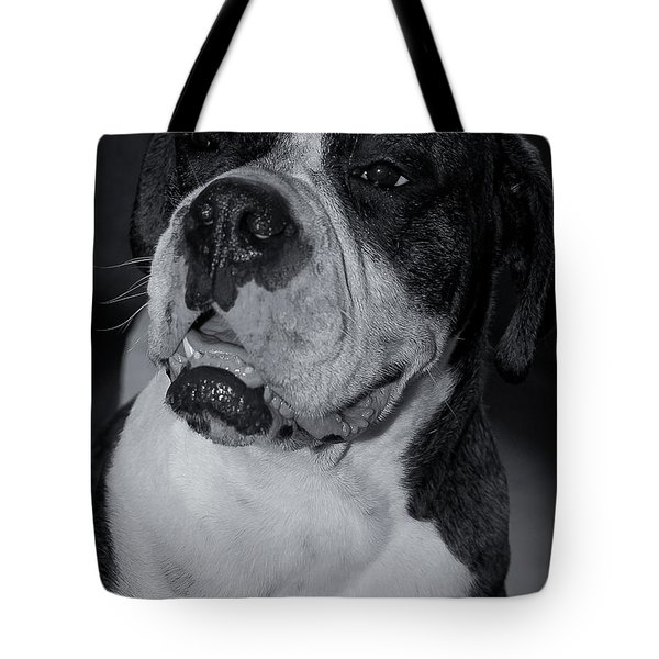 Just Handsome II Tote Bag by DigiArt Diaries by Vicky B Fuller