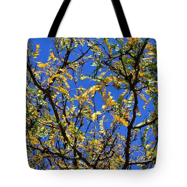 Kaleidoscope Tote Bag by Corinne Rhode