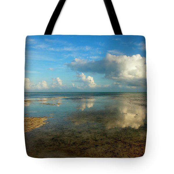 Keys Reflections Tote Bag by Mike  Dawson