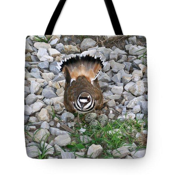 Kildeer and Nest Tote Bag by Douglas Barnett