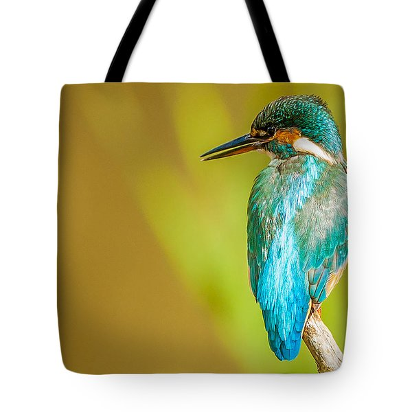 Kingfisher Tote Bag by Paul Neville
