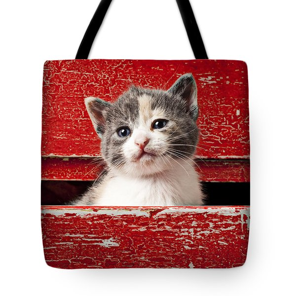 Kitten in red drawer Tote Bag by Garry Gay