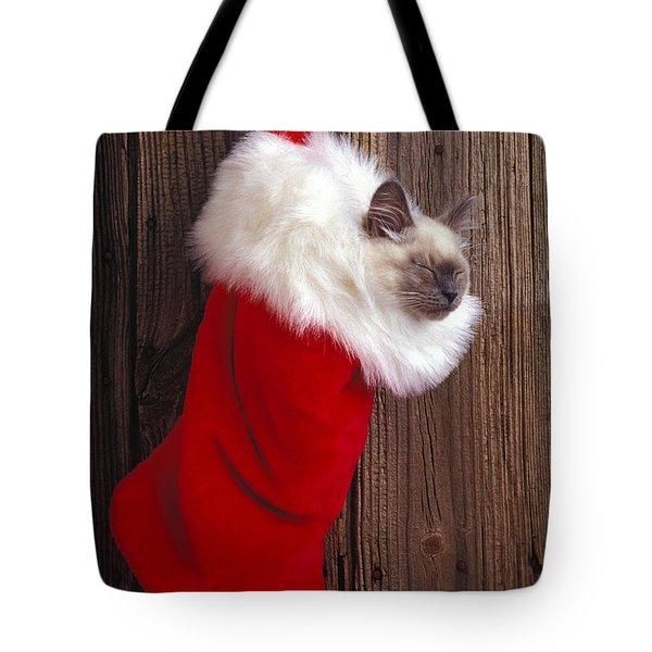 Kitten in stocking Tote Bag by Garry Gay