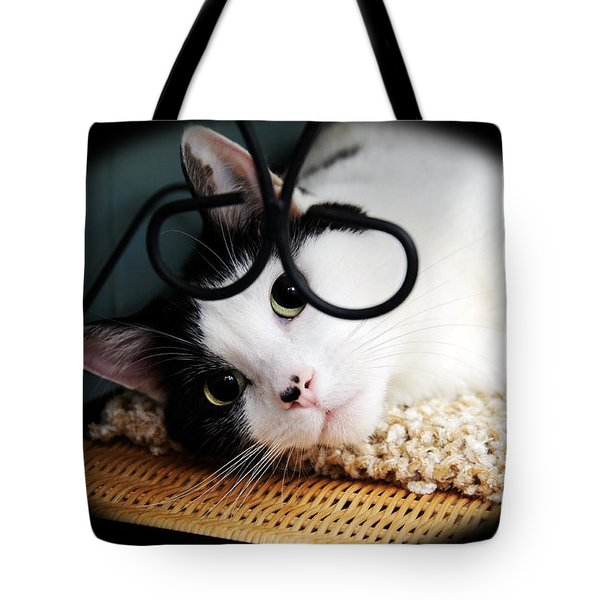 Kitty Cuteness Soft And Sweet Tote Bag by Andee Design