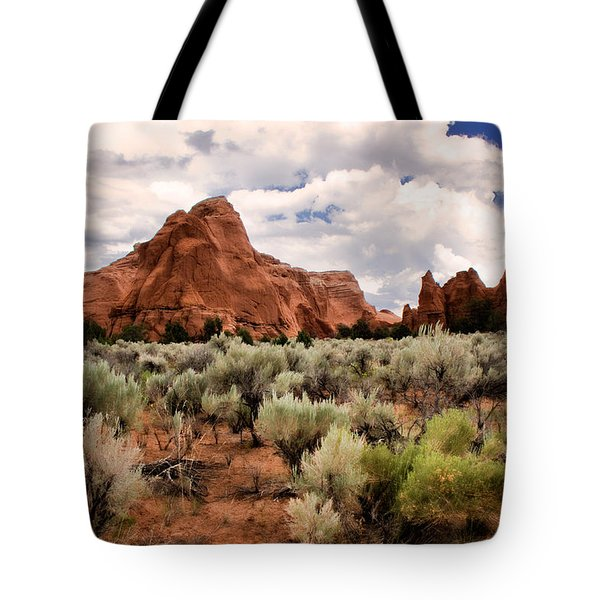 Kodachrome Sage Tote Bag by Lana Trussell