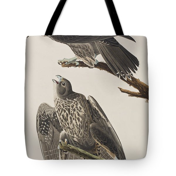 Labrador Falcon Tote Bag by John James Audubon