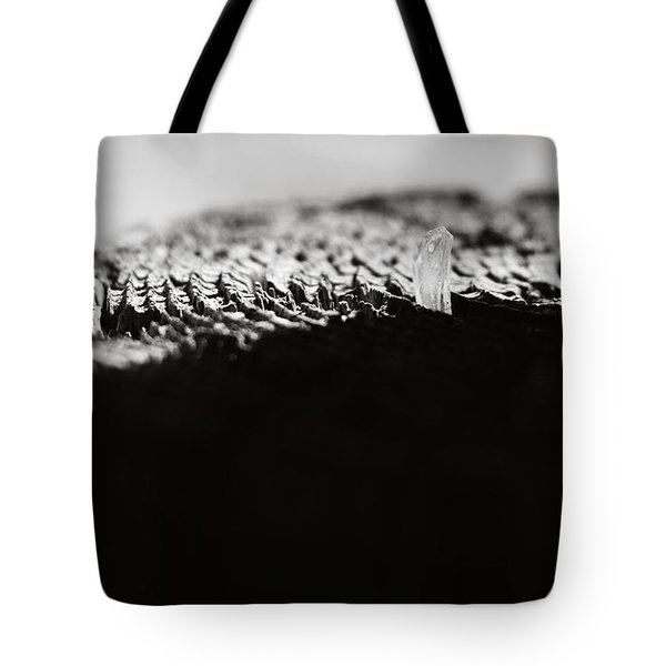Labyrinth Tote Bag by Rebecca Sherman