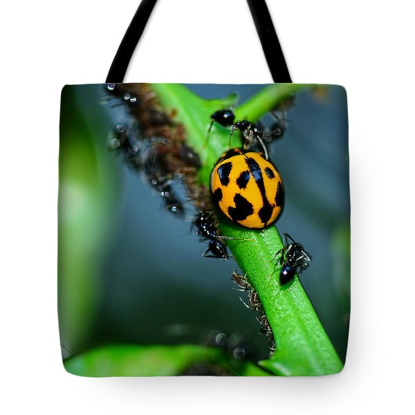 Ladybird And The Ants 2 By Kaye Menner Tote Bag by Kaye Menner