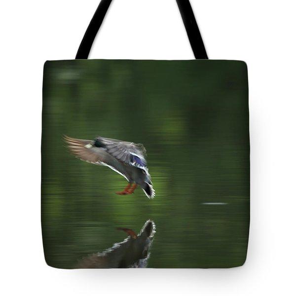Landing Tote Bag by Karol Livote