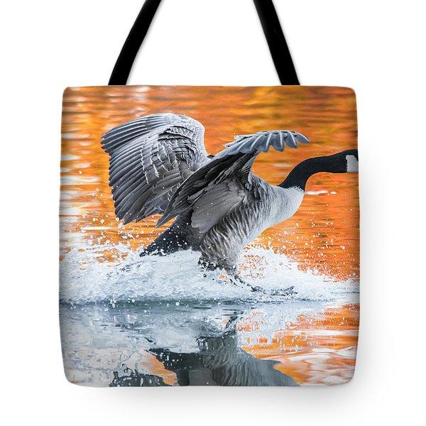 Landing Tote Bag by Parker Cunningham