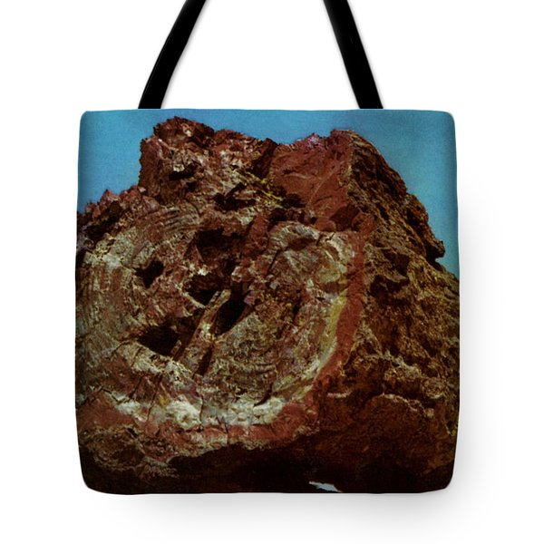 Large Petrified Log  Tote Bag by Ruth  Housley