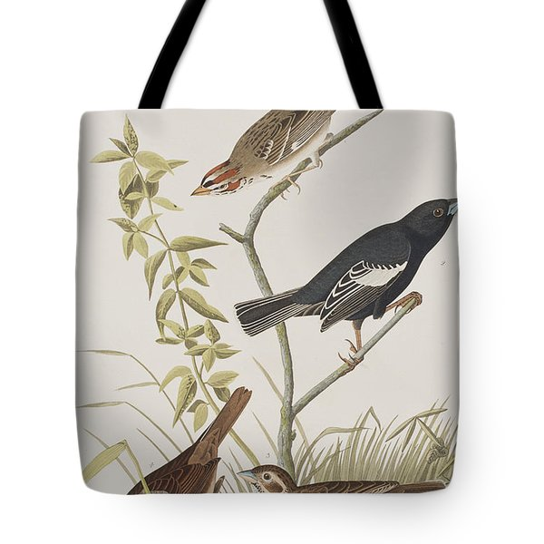 Lark Finch Prairie Finch Brown Song Sparrow Tote Bag by John James Audubon