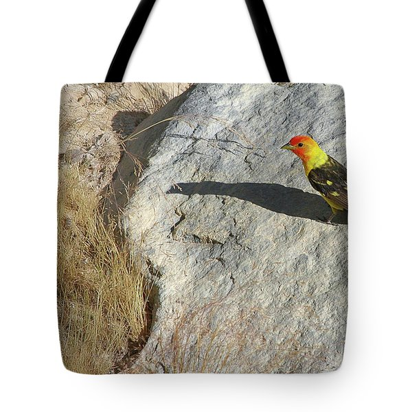 Lassen Volcanic National Park - Sulfur Works Tote Bag by Christine Till