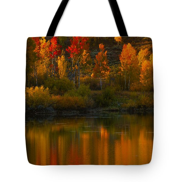 Last Light At Oxbow Bend Tote Bag by Sandra Bronstein
