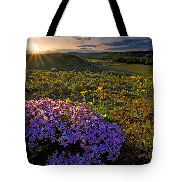 Last Light Of Spring Tote Bag by Mike  Dawson