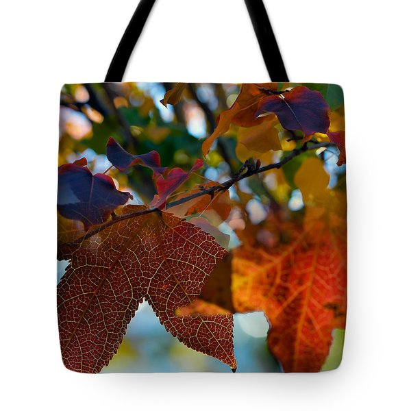 Late Autumn Colors Tote Bag by Stephen Anderson