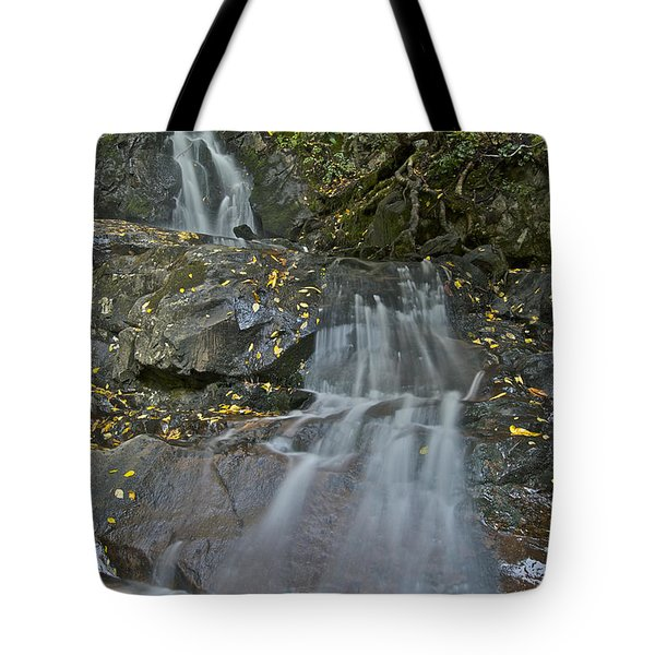 Laurel Falls Tote Bag by Michael Peychich