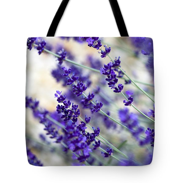 Lavender Blue Tote Bag by Frank Tschakert
