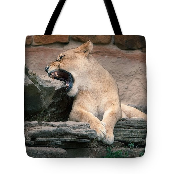 Lazy Day Tote Bag by Jonas Wingfield