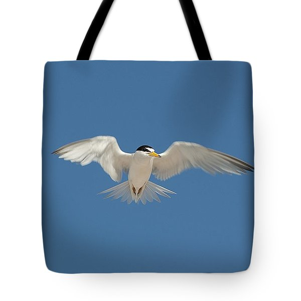 Least Tern 2 Tote Bag by Kenneth Albin