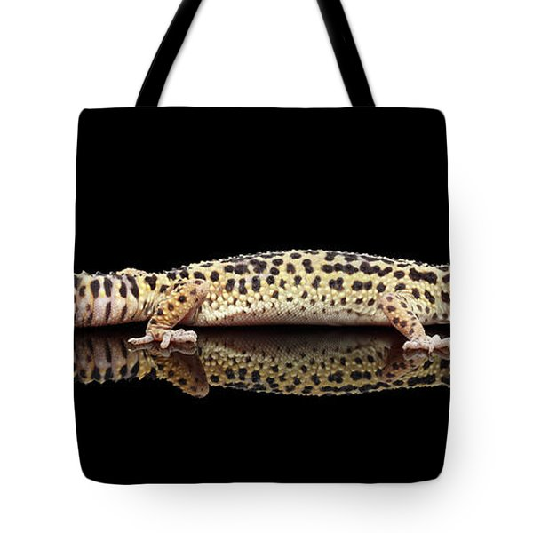Leopard Gecko Eublepharis Macularius Isolated On Black Background Tote Bag by Sergey Taran