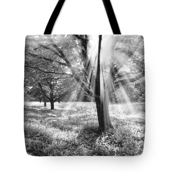 Let There Be Light Tote Bag by Debra and Dave Vanderlaan