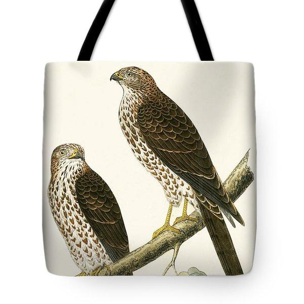 Levant Sparrow Hawk Tote Bag by English School