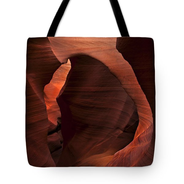 Light At Tne End Of The Tunnel Tote Bag by Mike  Dawson