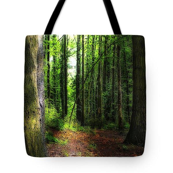 Light Through The Trees Tote Bag by Meirion Matthias