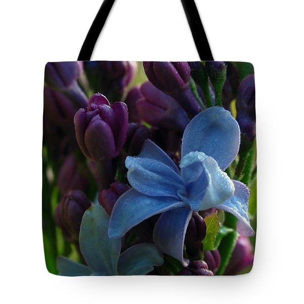Lilac Tote Bag by Juergen Roth